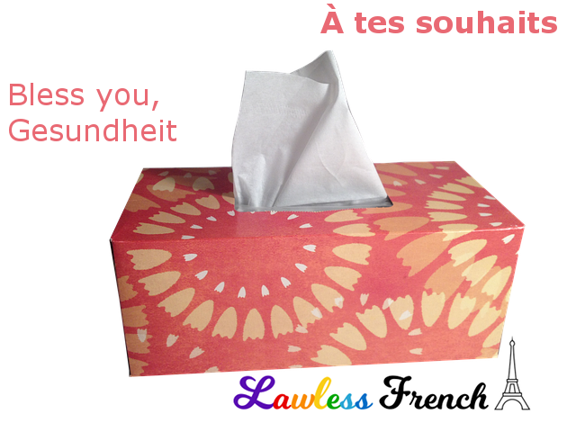 À tes souhaits - Bless you in French