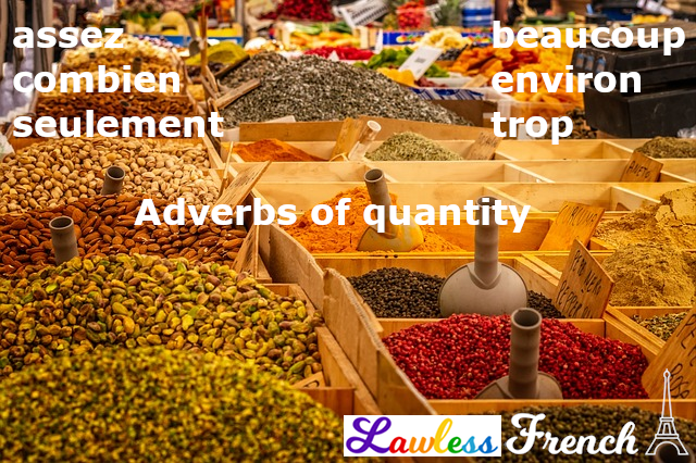 French adverbs of quantity