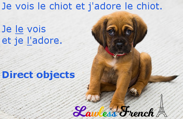French direct object