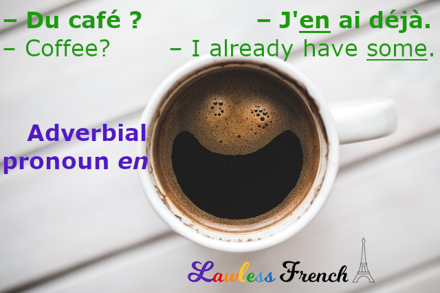 French adverbial pronoun en