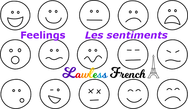 Feelings in French