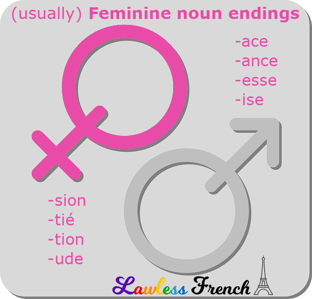Feminine endings of French nouns