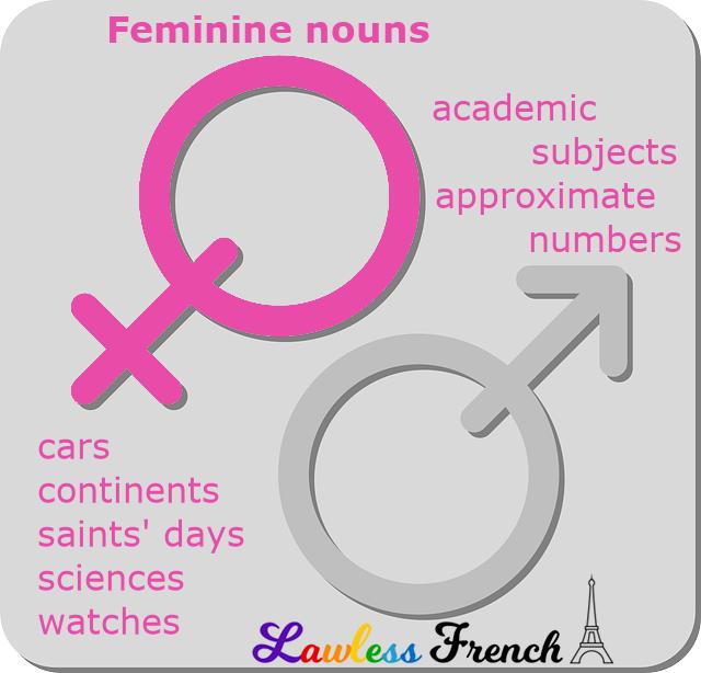 Feminine French nouns