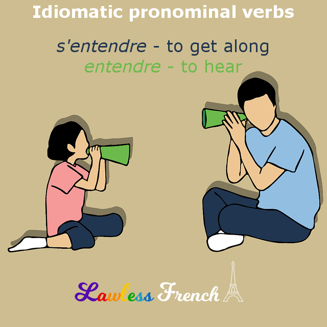 French idiomatic pronominal verbs
