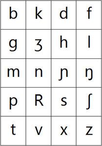 French IPA - Consonants