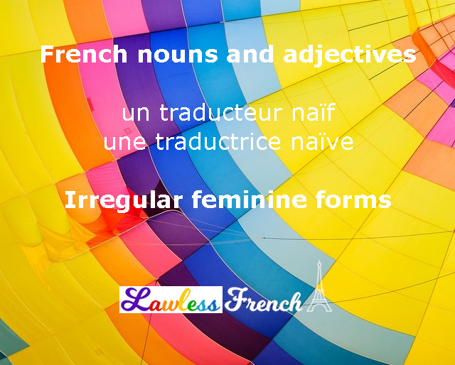 French irregular adjectives and nouns