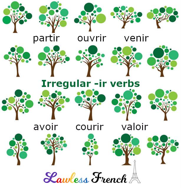 French irregular -ir verbs