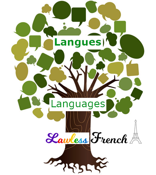 Languages in French