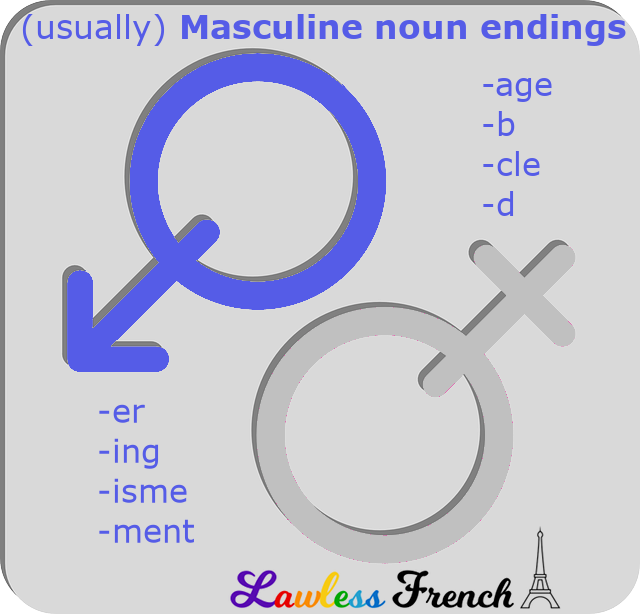 Masculine endings of French nouns