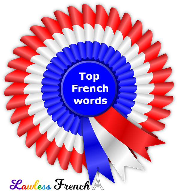 Top 25 French words