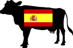 Parler le français comme une vache espagnole