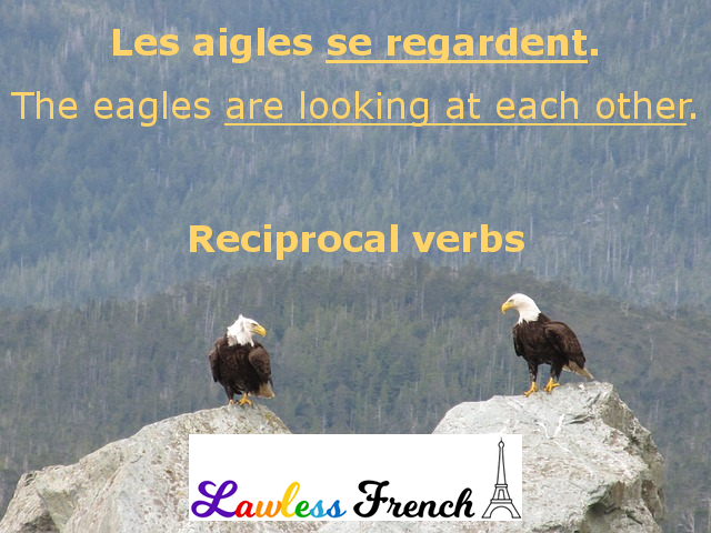 French reciprocal verbs