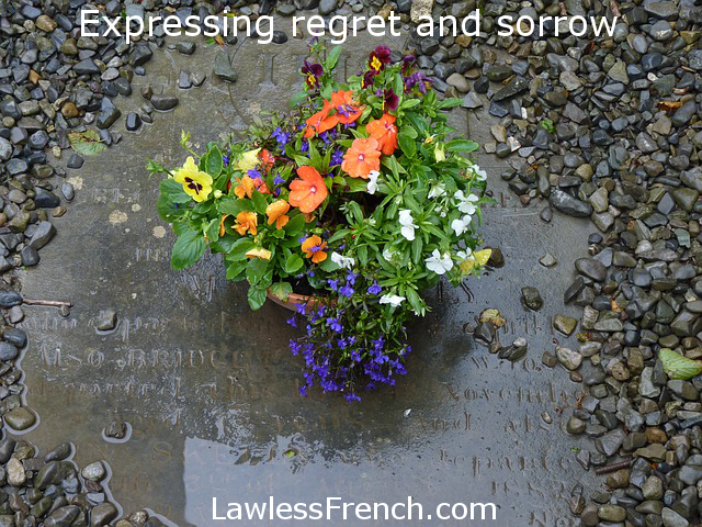 Regret and sorrow in French