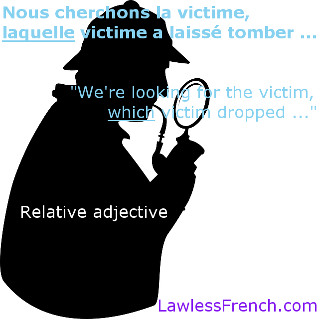 French relative adjective lequel
