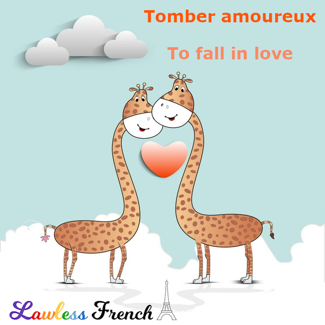 Tomber amoureux - to fall in love