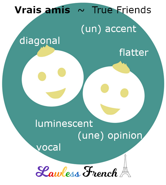 French vocabulary - true friends